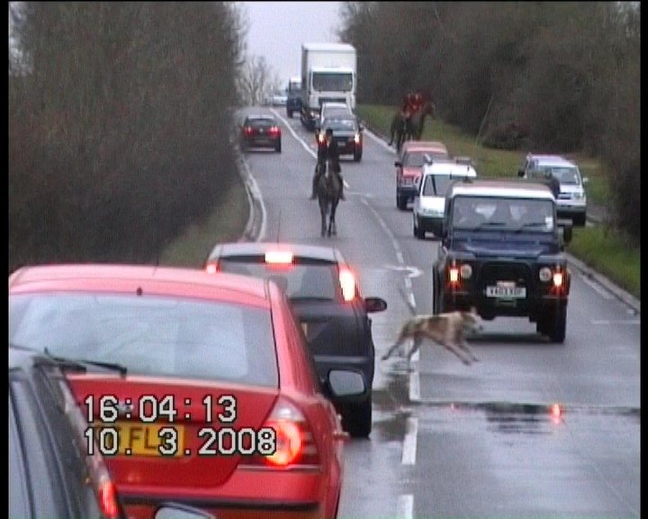 Hounds on the A429 Fosseway